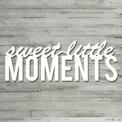 Napis - sweet little moments